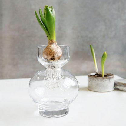 Lowa vase klar