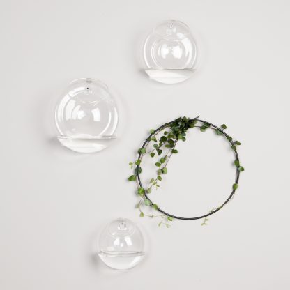 Wall glass vase dbkd