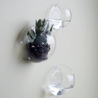 Wall glass vegg vase DBKD