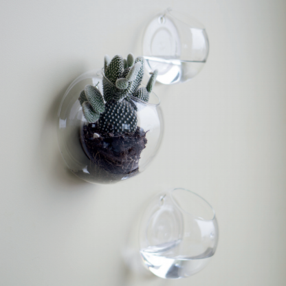 Wall glass vegg vase DBKD