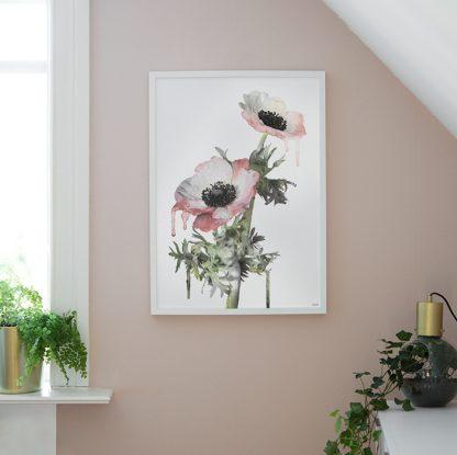 Poster anemone Design Lina Johansson