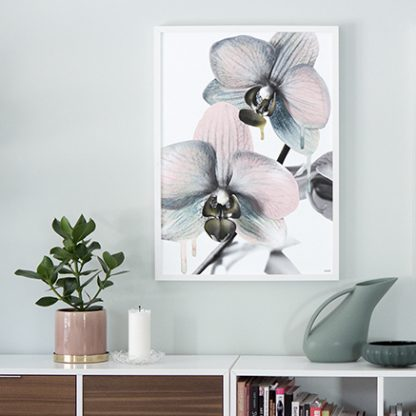 Poster Orchid orkide Design Lina Johansson