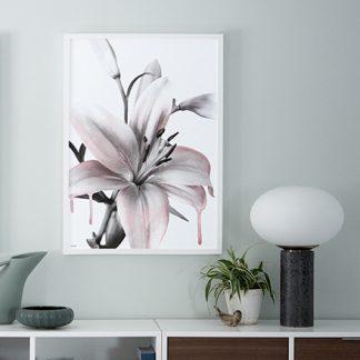 Poster Lily lilje Design Lina Johansson