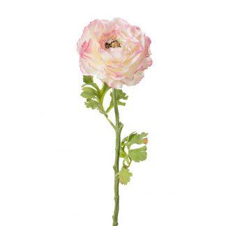 Ranunkel rosa 50 cm Mr Plant