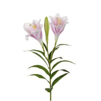 Lilje rosa 100 cm Mr Plant