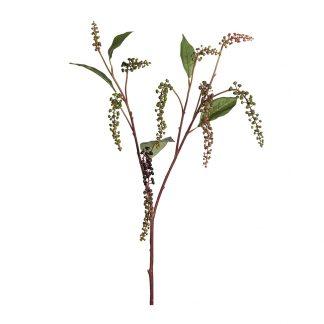 Bærkvist 90 cm Mr Plant