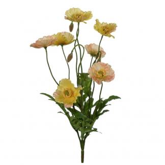 Gul valmue 35 cm Mr Plant