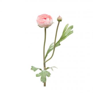 Ranunkel rosa 36 cm Mr Plant