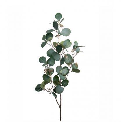 Eucalyptus med bær 100 cm Mr Plant