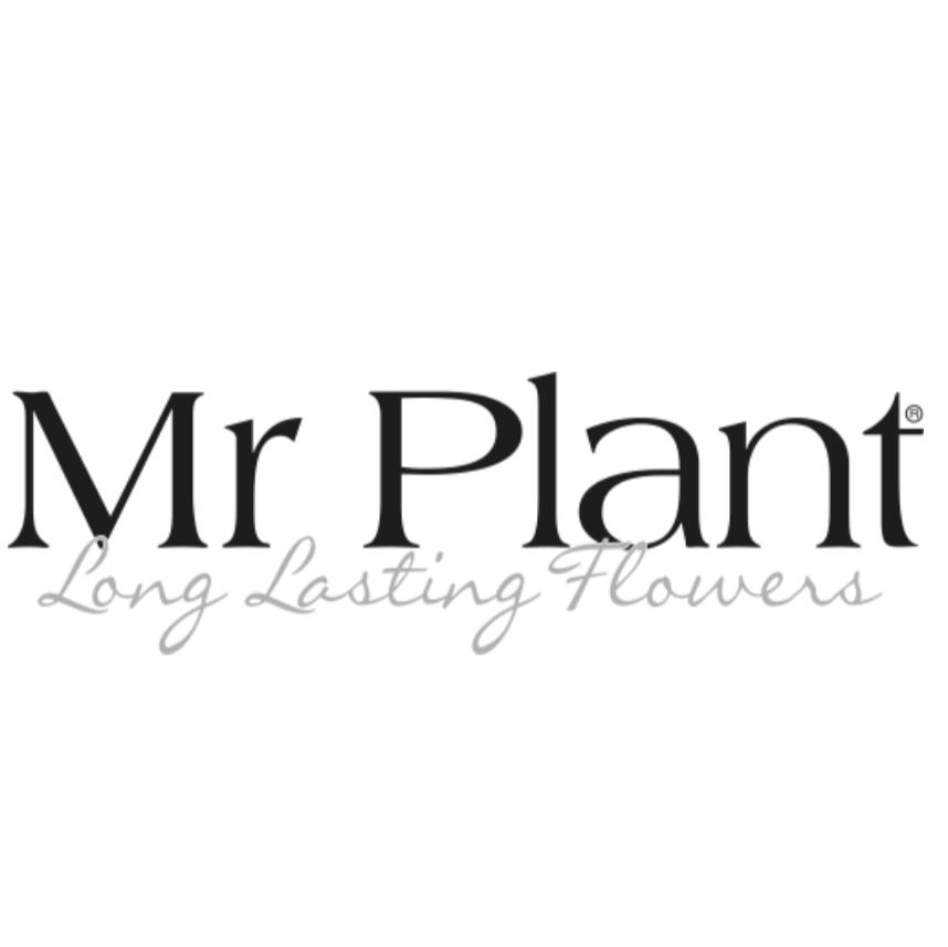 Mr Plant Logo