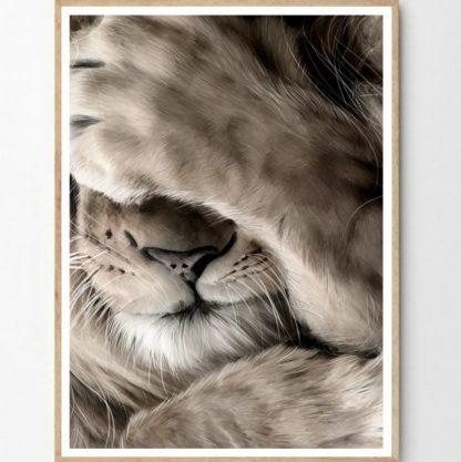 Leo poster 40x50 cm Linn Wold
