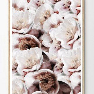 Flower bomb poster 30x40 cm Linn Wold
