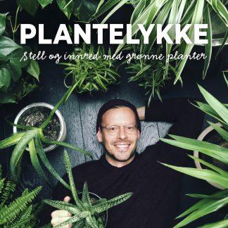 Plantelykke, stell og innred med grønne planter Anders Røyneberg bok