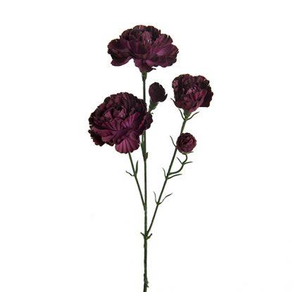 Nellik eleganse mørk rød 65 cm Mr Plant