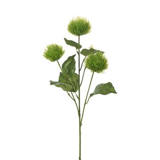 Kvist grønn 60 cm Mr plant