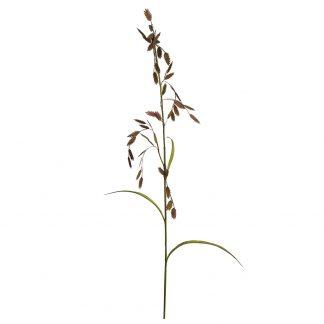 Strå mr plant 75 cm