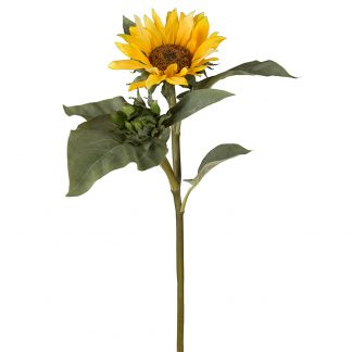 Solsikke gul 70 cm Mr Plant