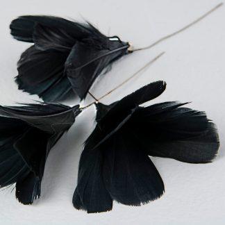 Fjær med tråd A lot Decoration sort svart