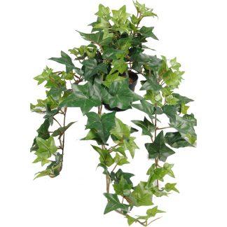 Mr plant eføy 60 cm