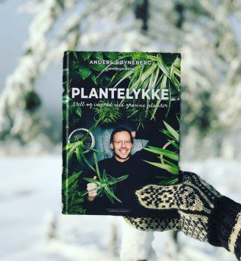 Plantelykke, stell og innred med grønne planter Anders Røyneberg bok Arctic gardener